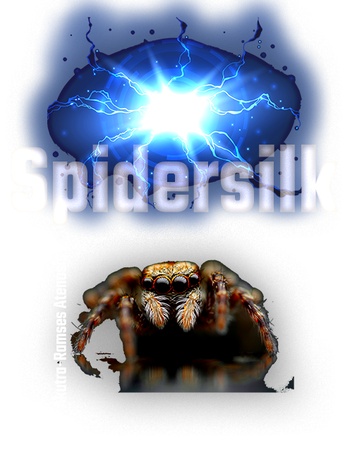 SpiderSilk front cover