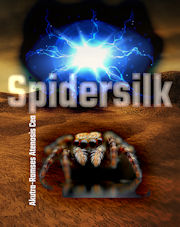 SpiderSilk front cover image